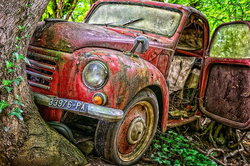 Abandoned red vehicle beside tree at daytime