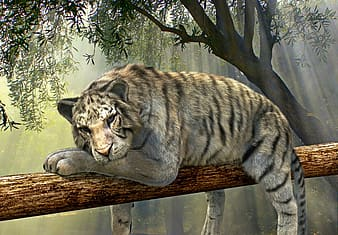 White tiger on tree painting