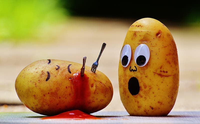 Shallow focus of two potatoes art