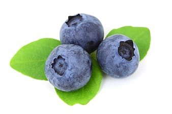 Three blueberries against white background