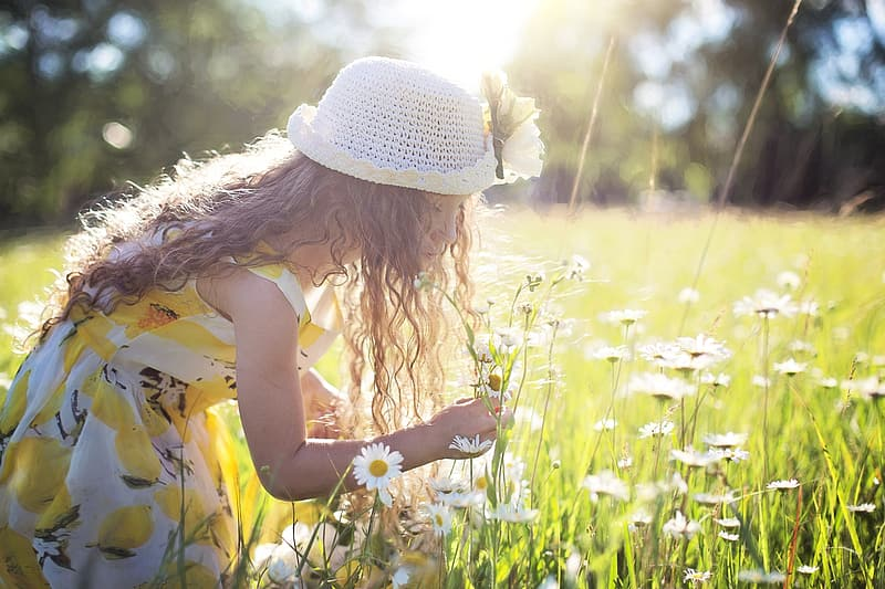 Girl in yellow-white dress and white hat picking white petaled flowers