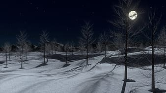 3D animation of withered trees during winter season at nighttime
