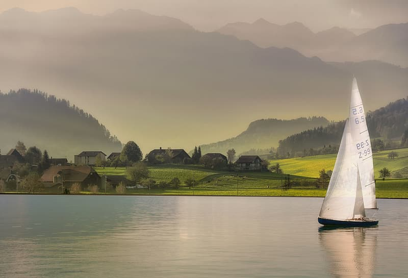 White boat on water near green grass field during daytime