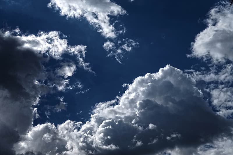 Low angle photo of white cloud