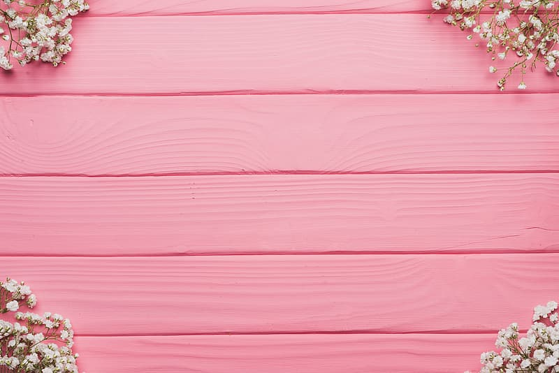 White flowers on pink wooden pallet