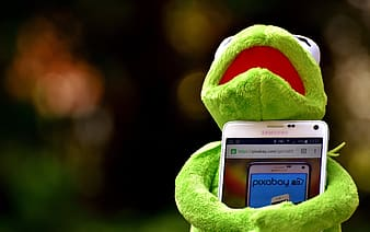 Selective focus photography Kermit the Frog hogging white Samsung Android smartphone turned on