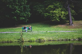 Two person sitting on bench near body of water and trees during daytime