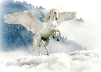 Pegasus above of cloudy sky
