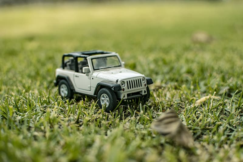 White and black jeep wrangler on green grass field during daytime