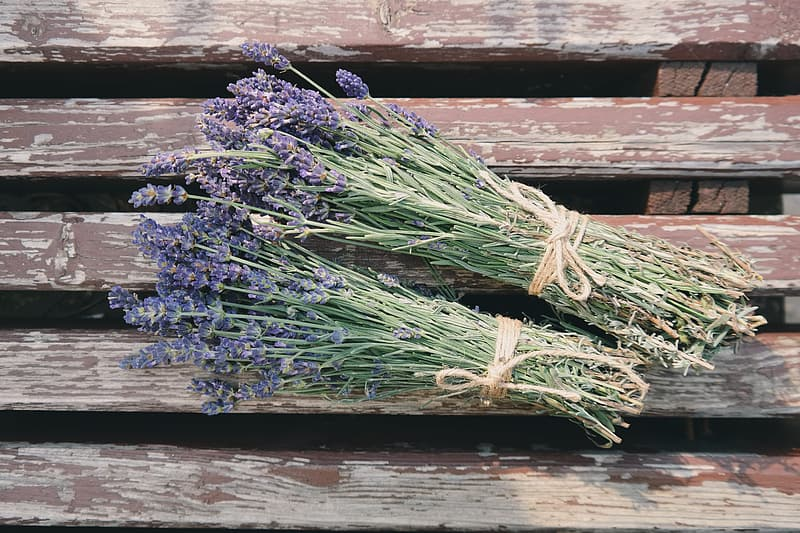 Two bundles of lavenders