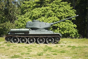 Green military tank near green leafed trees at daytime