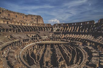 The Colosseum, Rome Italy during daytime
