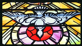 White dove stained glass decor