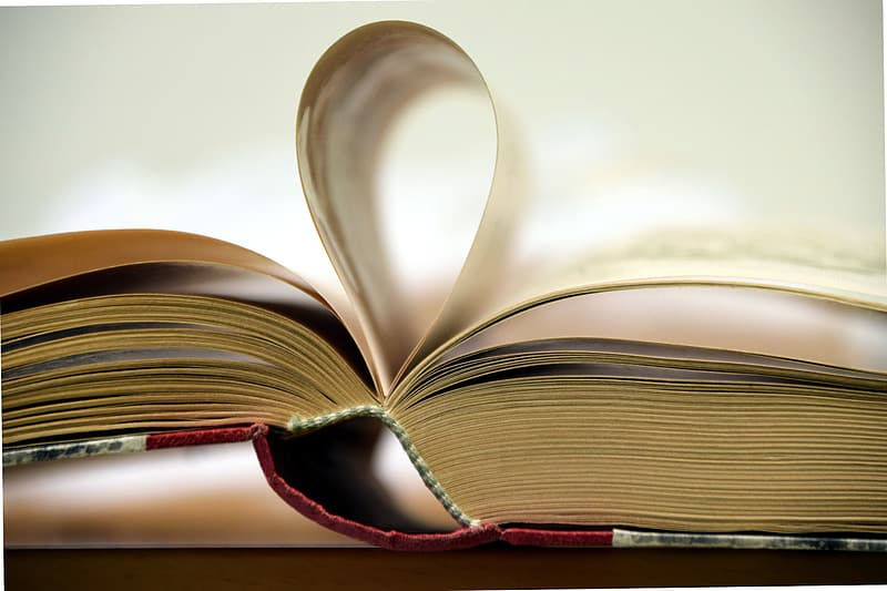 Close-up photography of opened book