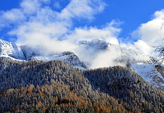 Green and brown trees on mountain under white clouds and blue sky during daytime