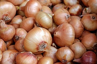 Close up photo of brown onions