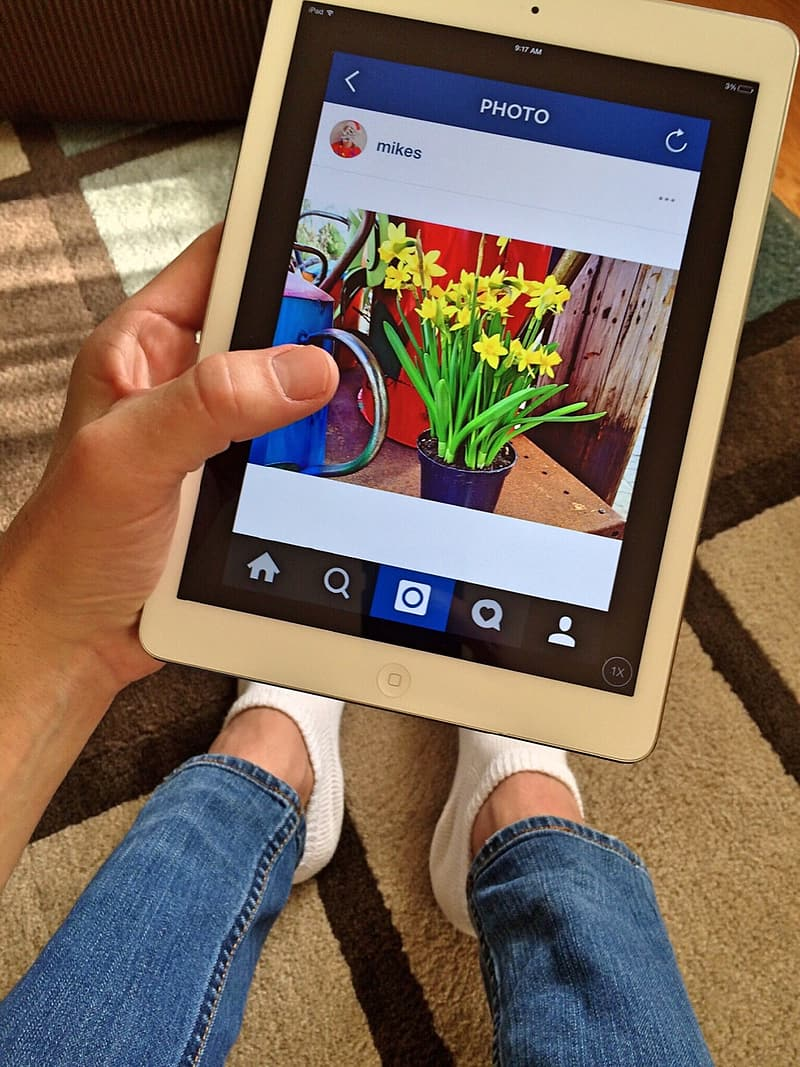 Person holding iPad showing potted flowers