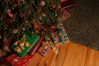 Green Christmas tree and gift presents