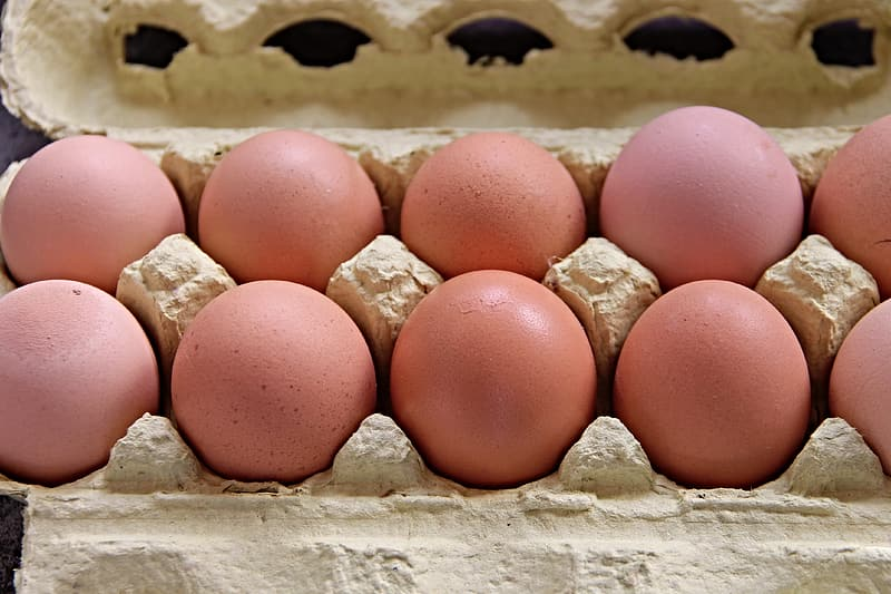 Brown eggs on brown egg tray