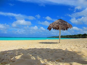 Landscape photo of beach at daytime