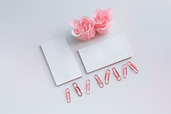 Pink hearts with white paper