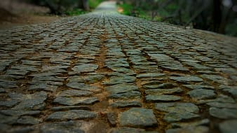 Close-up photography of gray concrete pathway during daytime
