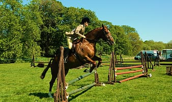 Time lapse photography of woman riding horse