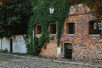 Brown brick building with green plants