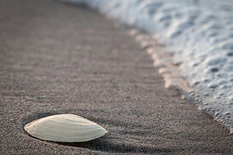Brown wooden heart on gray sand during daytime