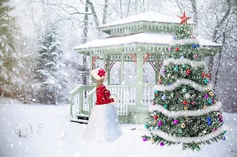 Female in red dress in front of Christmas tree and gazebo during winter