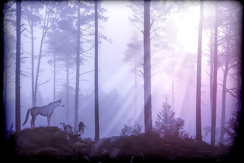 Unicorn in the middle of forest graphics art