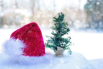 Red and white Christmas hat beside green Christmas tree miniature