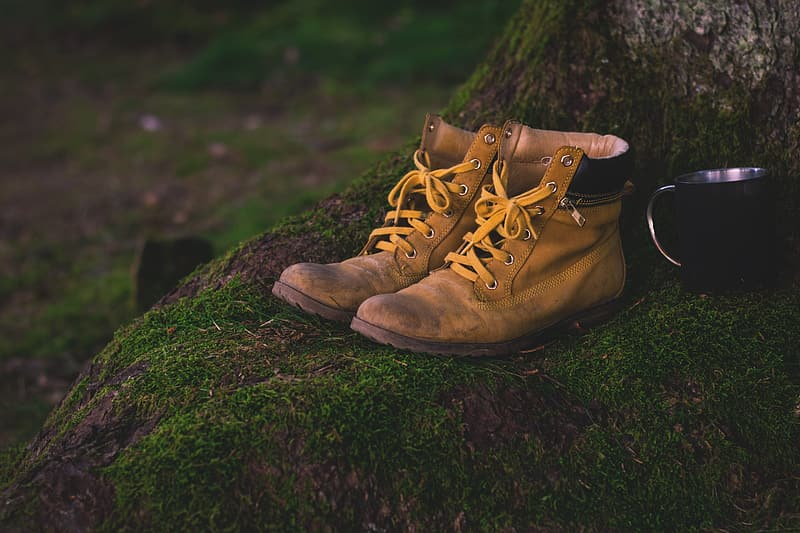 Pair of brown Timberland leather boots on tree base