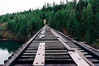 Empty wooden rail track above water at daytime