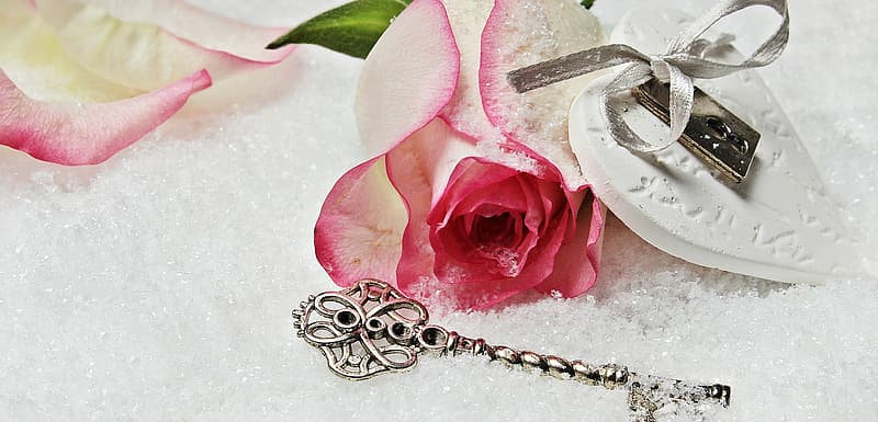 Pink rose and silver key in snow