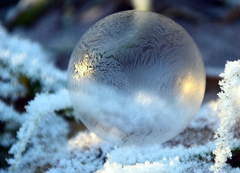 Focus photography of snowball