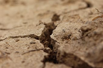 Macro photography of cracked soil