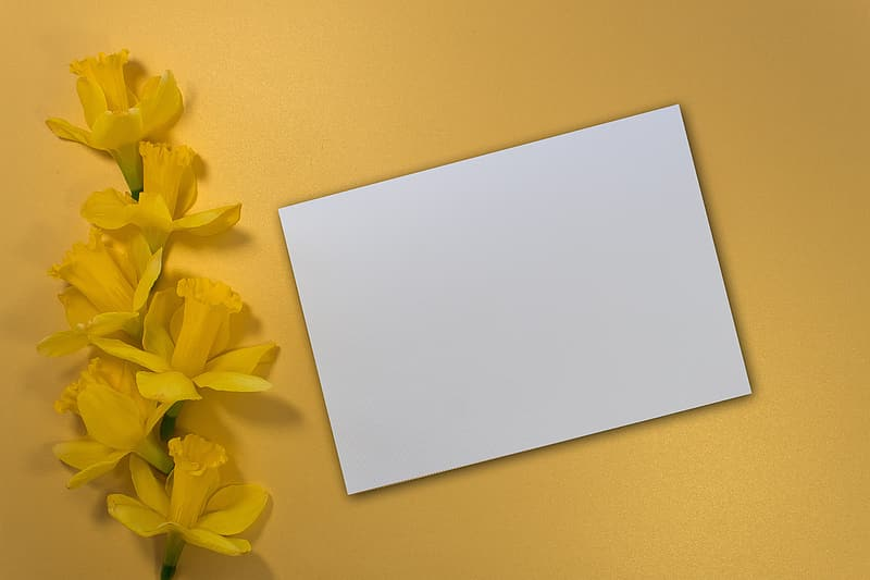 White paper on yellow surface