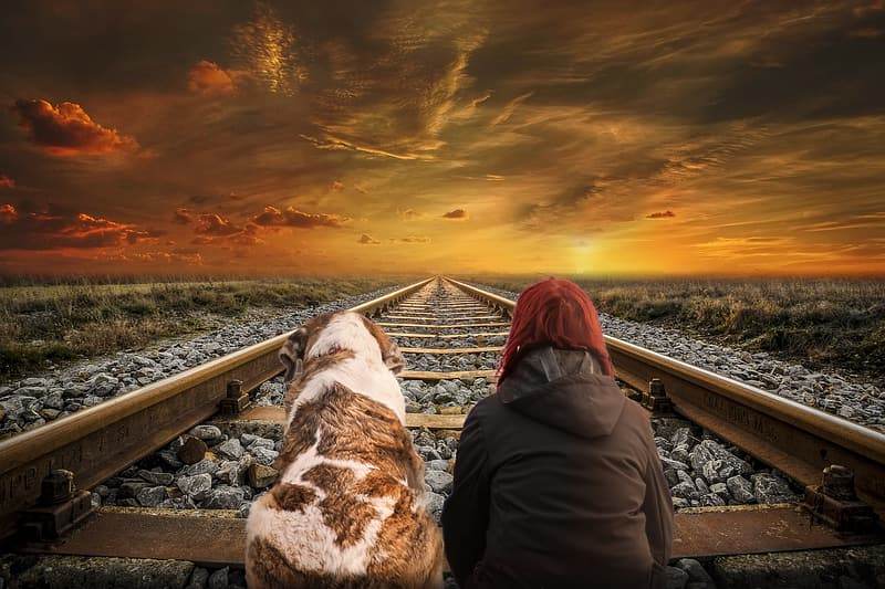 Woman in brown jacket sitting on train rail during sunset