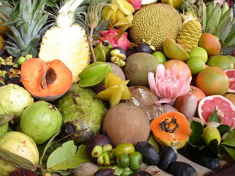 Bundle of fruits