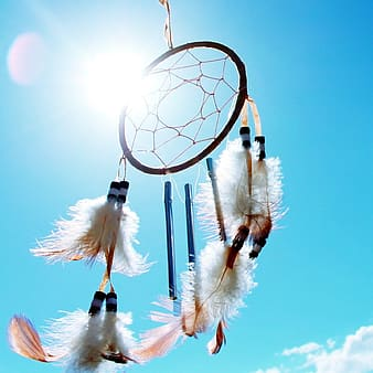 Black and white feather dreamcatcher during daytime
