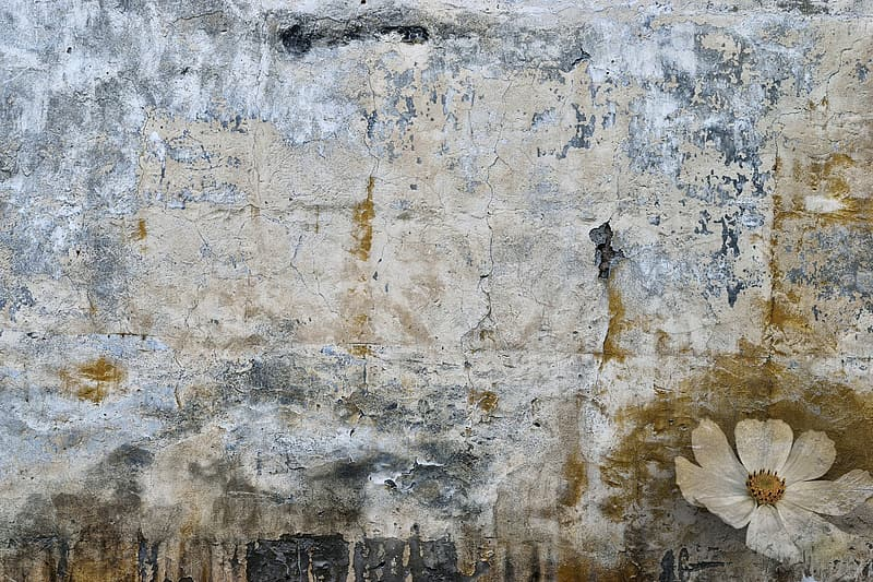 Untitled, spot, stain, old wall, wallpaper, background, wall, flower, decorative, abstract