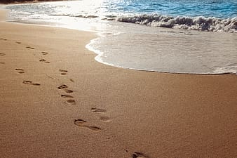 Footsteps on sand near shore