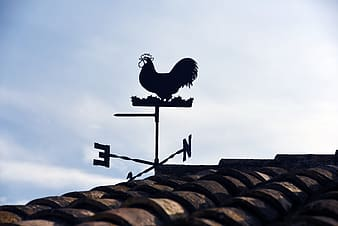 Silhouette photo of weathervane on roof during daytime