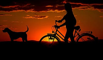 Silhouette of person with bike and dog