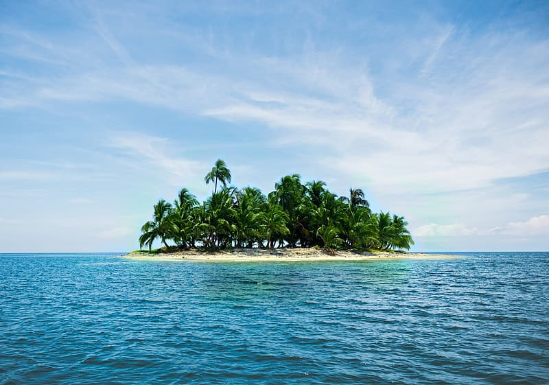 Green coconut tree on island surrounded by ocean