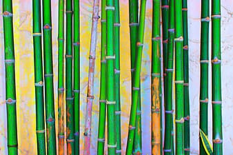 Bamboo plant painting