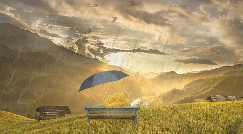 Bears holding umbrella sitting on bench looking at sunset wallpaper