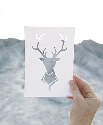 Person holding deer-themed card