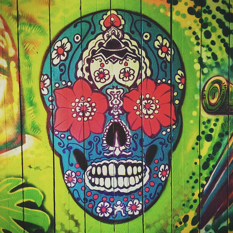 Blue, red, and white Calavera skull painting